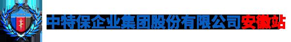 中特保(安徽)国际安股份有限公司