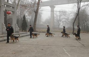 中特保保安服务有限公司-犬防安保服务